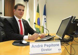 Associação Iberoamericana de Reguladores de Energia elege diretor da ANEEL como presidente