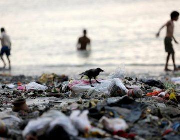 Câmara aprova criação do Dia de Combate à Poluição nos Oceanos