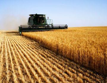 CNA e TCU impulsionam competitividade no setor agropecuário