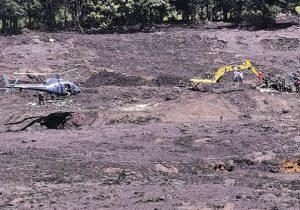 Tragédia em Brumadinho resultou na perda de 125 hectares de floresta