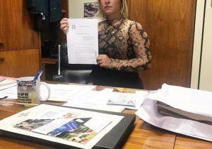 Deputada quer aumentar pena para bandidos que utilizarem réplicas de armas de fogo