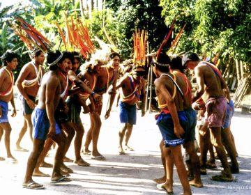 Ruralistas defendem atividades agropecuárias em territórios indígenas