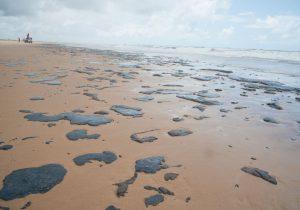 Câmara segura projeto para conservação do bioma marinho