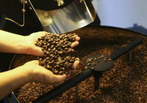 Seca e geadas vão inflacionar preço da saca de café